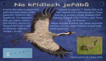 Výstava Na křídlech jeřábů Turnov